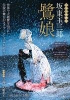 シネマ歌舞伎『鷺娘』